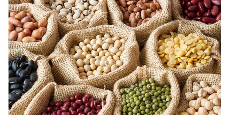 plant based ingredients